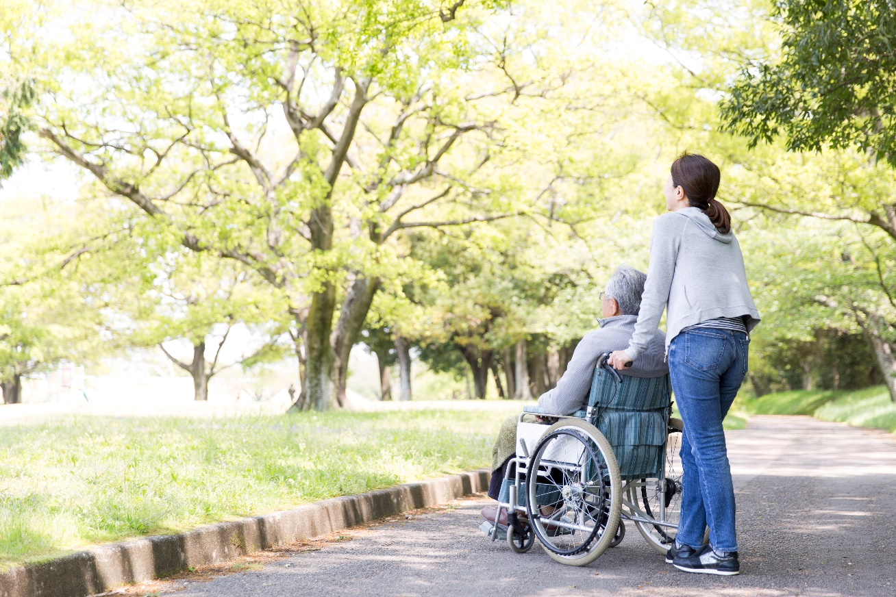 A person pushing a person in a wheelchair  Description automatically generated with medium confidence